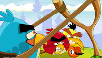 Angry Birds Punisher