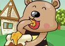 Teddy Bear's Adventure