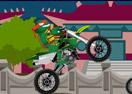 Biker Ninja Turtles