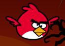 Bird Ninja