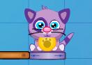Cat Shmat