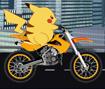 Pickachu Bike Trip