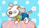 O Cãozinho