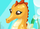 Seahorse Care