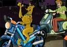 Scooby Stars Race