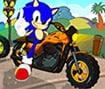 Sonic Friendly Race
