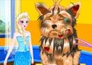 Médico do Cachorro da Elsa
