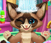 Kitten Bath